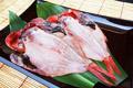 鯛 金目鯛(静岡県知事賞)大